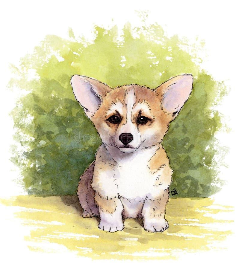 Waterverfillustratie van leuk puppy Welse Corgi Pembroke vector illustratie