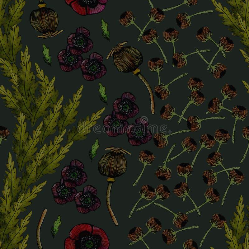 Waterverfillustratie van papavers stock illustratie