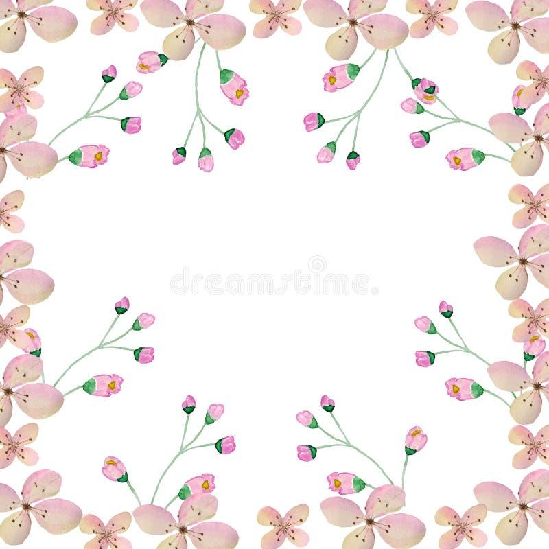 Waterverfillustratie van roze bloemen en takjes royalty-vrije illustratie