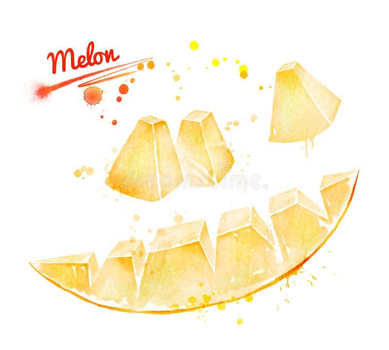 Waterverfillustratie van stuk van meloen royalty-vrije illustratie
