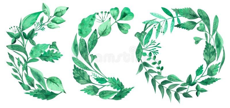 Waterverfillustratie van woord ECO die van groene bladeren wordt gemaakt stock illustratie