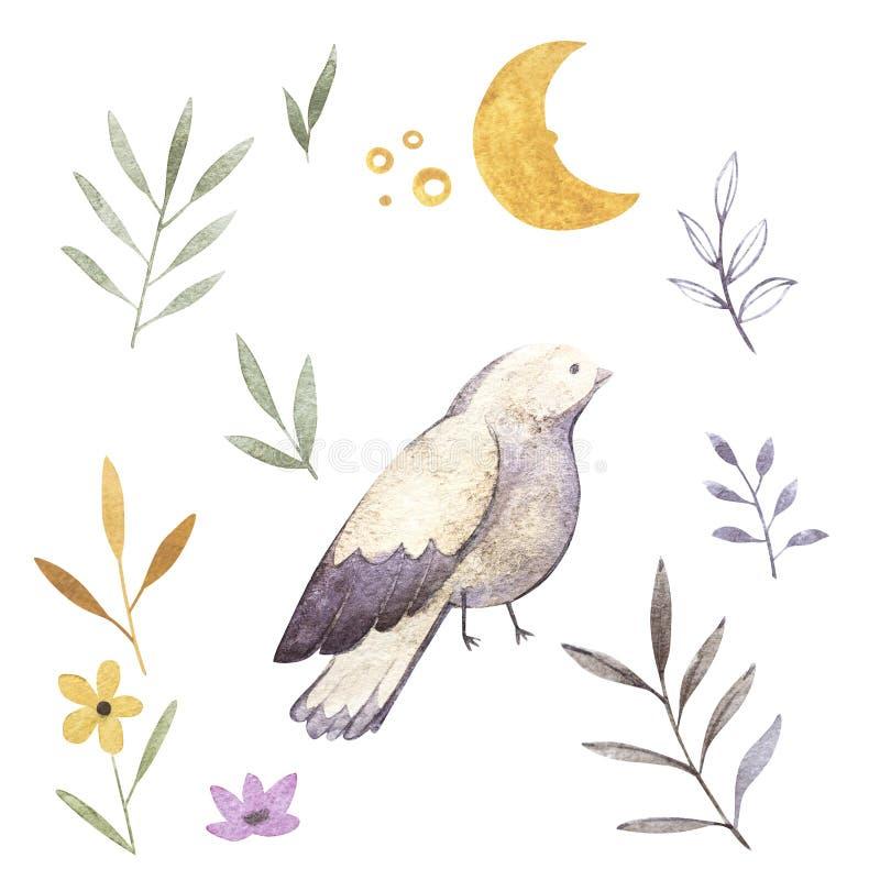Waterverfillustraties van vogel, tak, maan, bloemen en bloemen Geïsoleerdj op witte achtergrond Perfectioneer voor groet stock illustratie