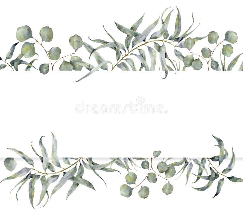 Waterverfkaart met eucalyptustak De hand schilderde bloemenkader met ronde bladeren van zilveren geïsoleerd dollareucalyptus stock illustratie