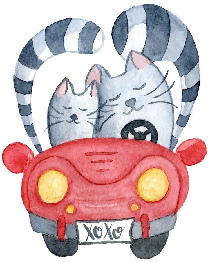 Waterverfkatten in enkel gehuwde rode auto royalty-vrije illustratie