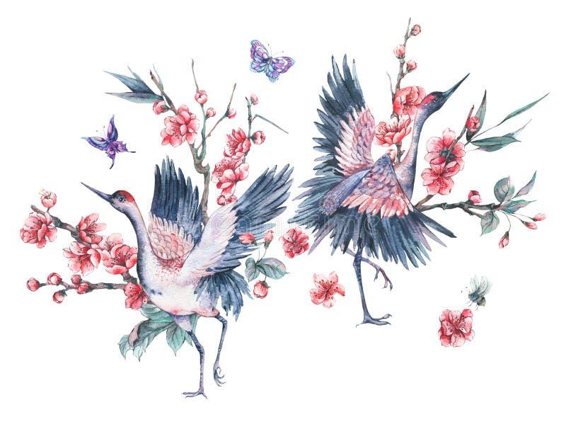 Waterverfkraan en bloeiende takken van kers royalty-vrije illustratie