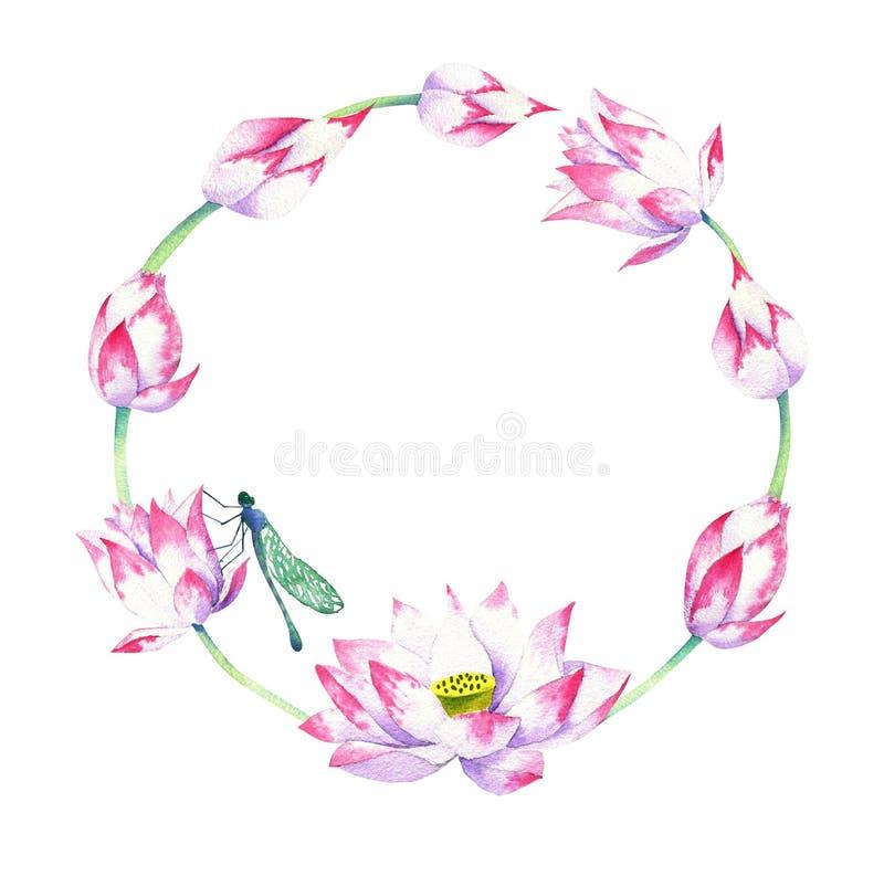 Waterverfkroon van lotusbloembloesems en bloemen met libel royalty-vrije illustratie