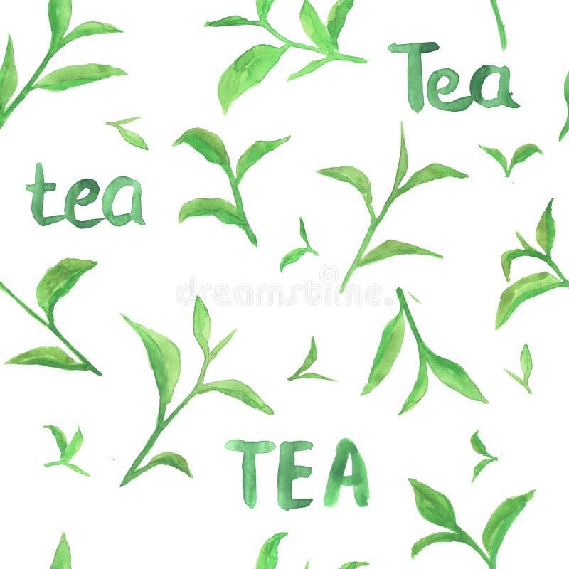 Waterverfpatroon met groene theebladen royalty-vrije stock afbeelding