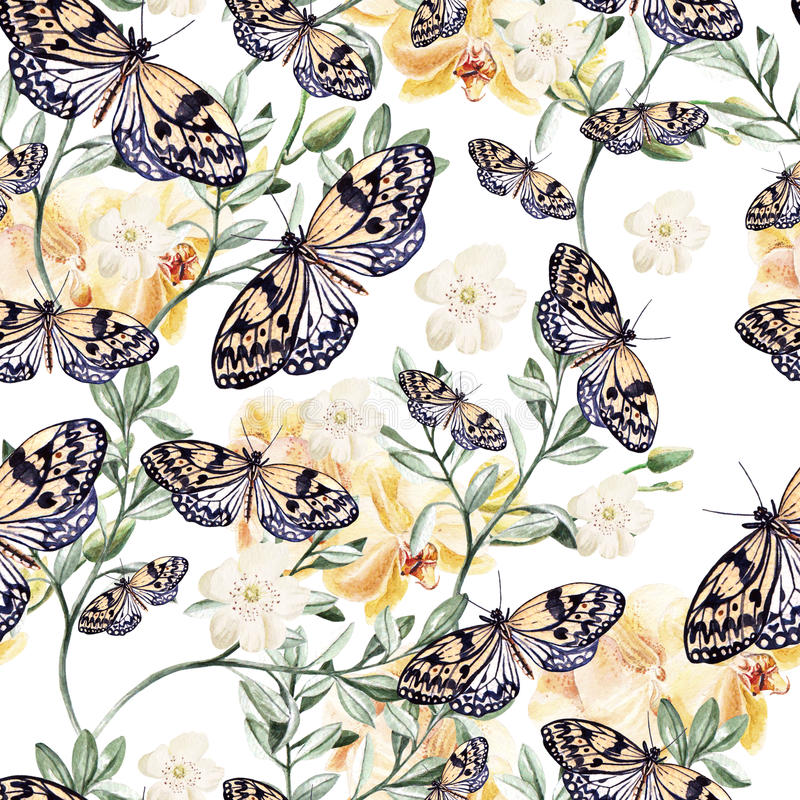 Waterverfpatroon met orchideeën, installaties en vlinders royalty-vrije illustratie