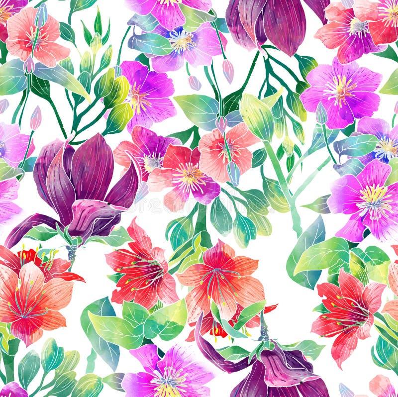 Waterverfpatroon van exotische bloemen stock illustratie