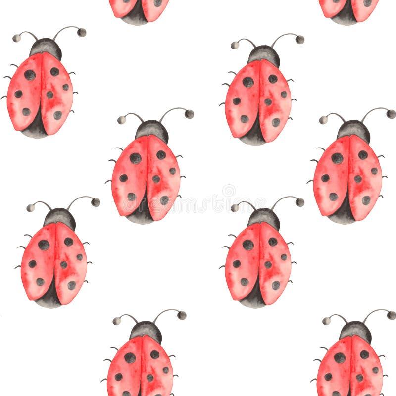 Waterverfpatroon van insecten, lieveheersbeestjes, beddewantsen, kevers met bladeren op een witte achtergrond royalty-vrije illustratie