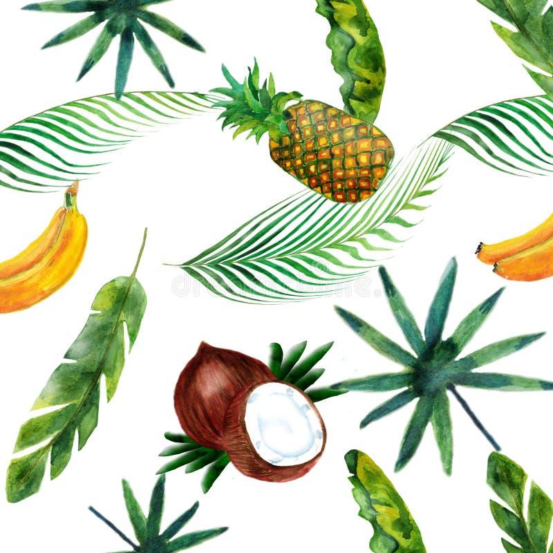Waterverfpatroon van kokosnoot, banaan, ananas en palmen op witte achtergrond wordt geïsoleerd die vector illustratie