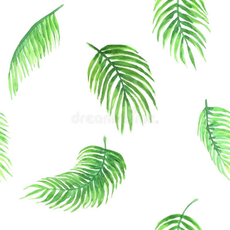 Waterverfpatroon van palm royalty-vrije illustratie