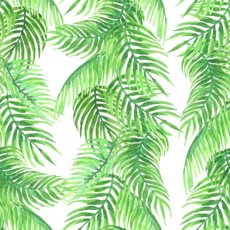 Waterverfpatroon van palm royalty-vrije stock afbeelding