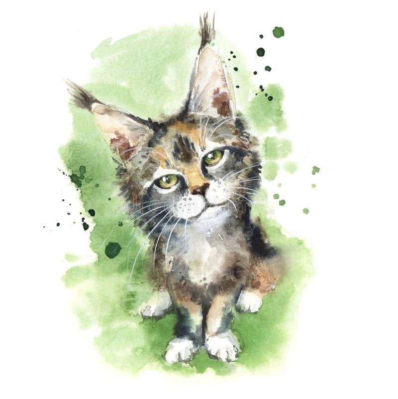 Waterverfportret van een katje Het wild van het lynxkatje royalty-vrije illustratie