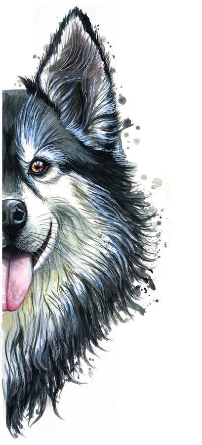 Waterverfprintshop, druk op het thema van het ras van honden, zoogdieren, dieren, kweekt Engelse buldog, buldog, portret, kleur r stock illustratie