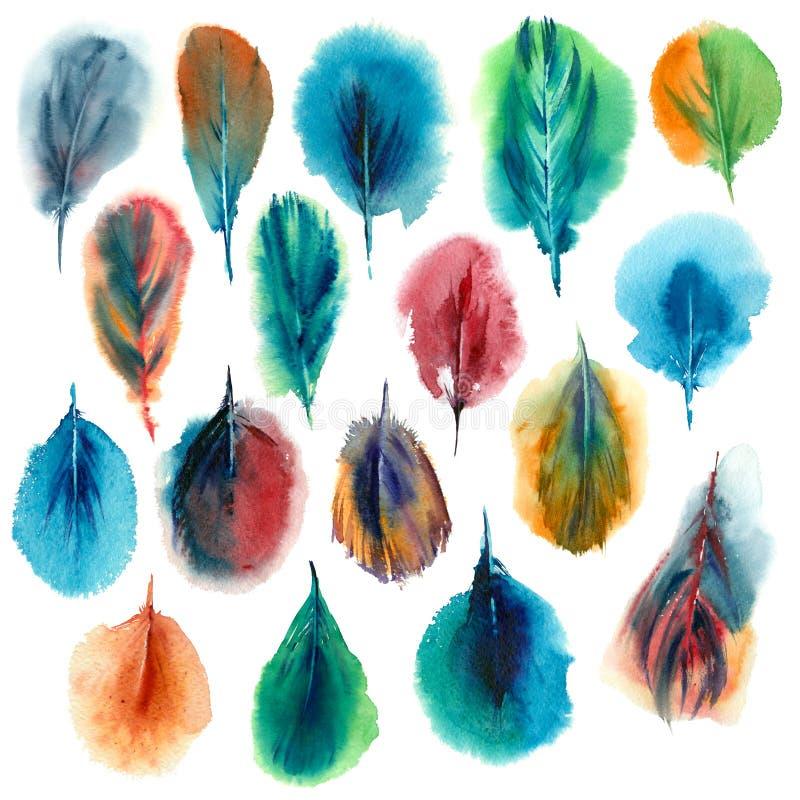 Waterverfreeks Kleurrijke Veren stock illustratie