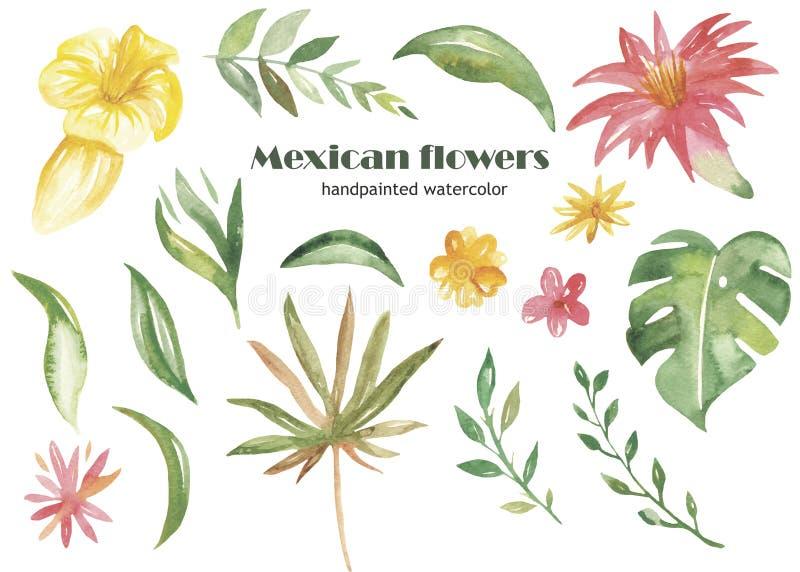 Waterverfreeks tropische bloemen, bladeren en installaties royalty-vrije illustratie