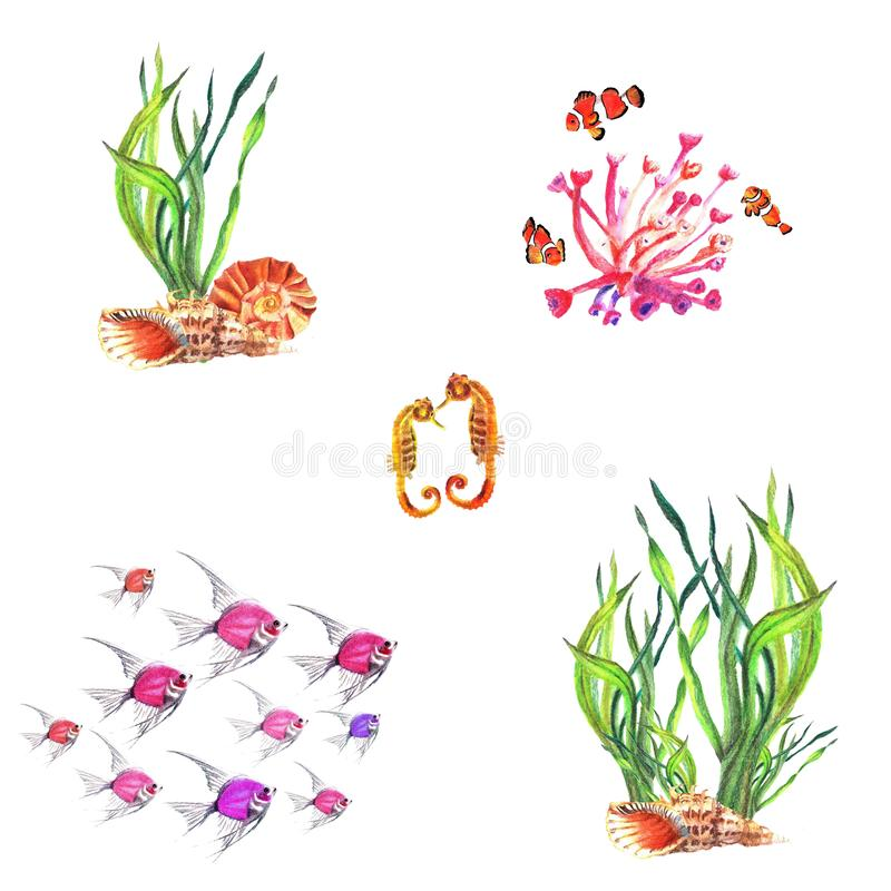 Waterverfsamenstellingen van waterplanten, koralen, clown-vissen, zeepaardjes vector illustratie