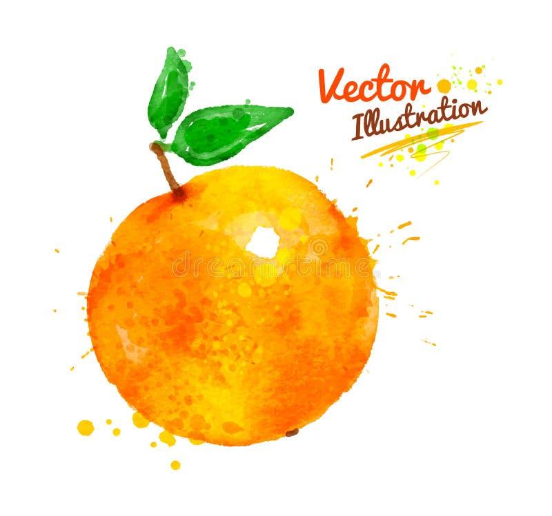 Waterverfsinaasappel vector illustratie