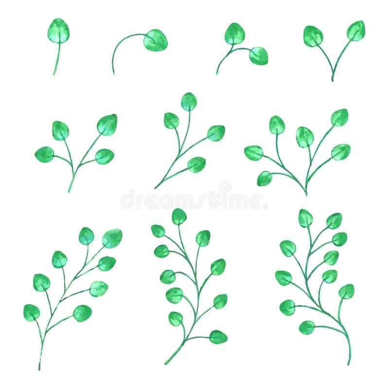 Waterverftakken met groene bladeren in diverse vormen Vector illustratie stock illustratie