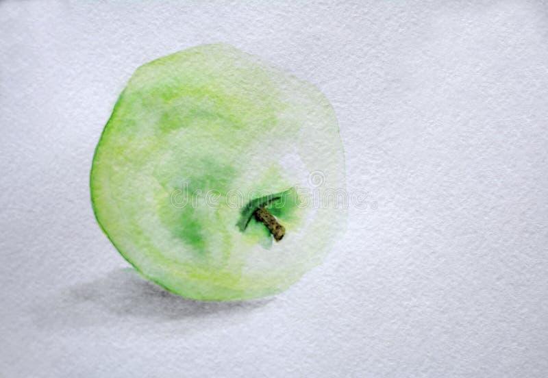 Waterverftekening, groene appel met een twijg vector illustratie