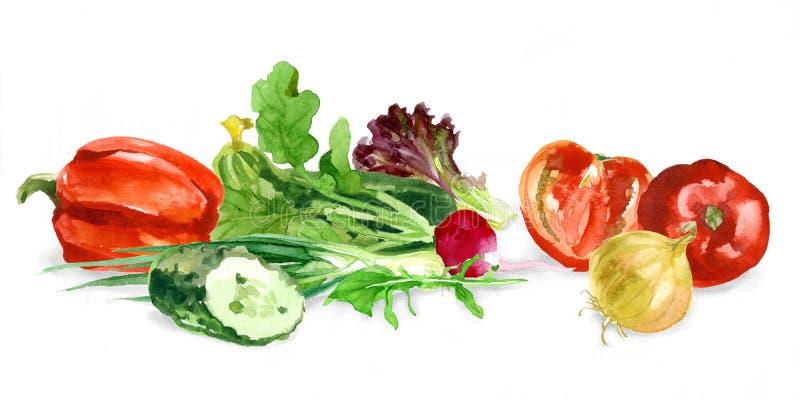 Waterverfvoedsel Verse product-groenten vegetables royalty-vrije illustratie