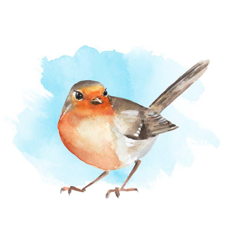 Waterverfvogel Robin vector illustratie