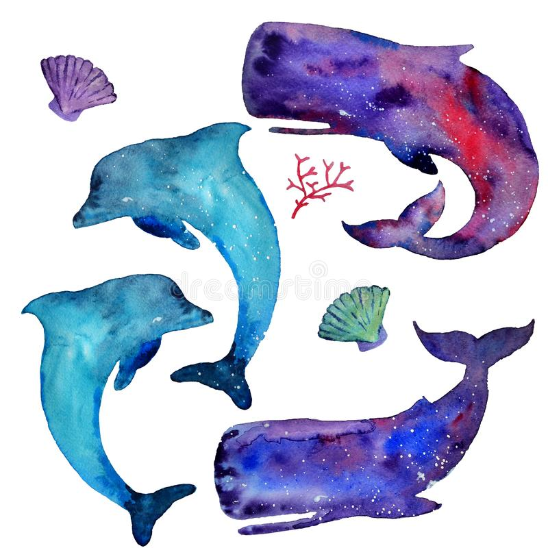 Waterverfwalvissen, dolfijnen en overzeese die elementen op een witte achtergrond worden geïsoleerd Hemel en sterrentextuur Overz vector illustratie