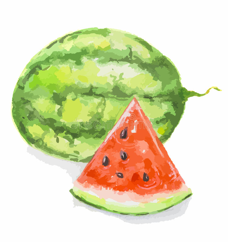 Waterverfwatermeloen royalty-vrije illustratie