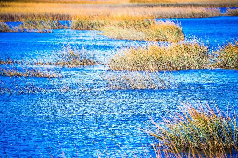 Waterway and marsh views on johns island south carolina royalty free stock photography