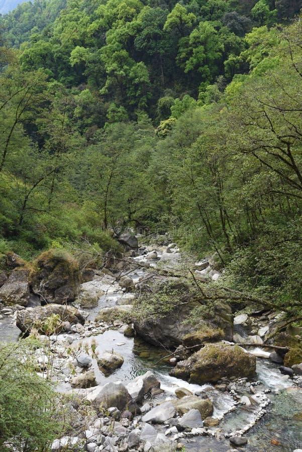 The waterway in Nepal. View of waterway in Nepal stock photos