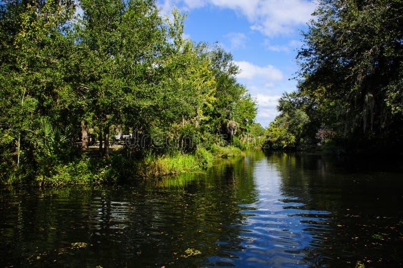 Waterway in the Swamp. Waterway going to Homosassa Springs Wildlife Park stock photos