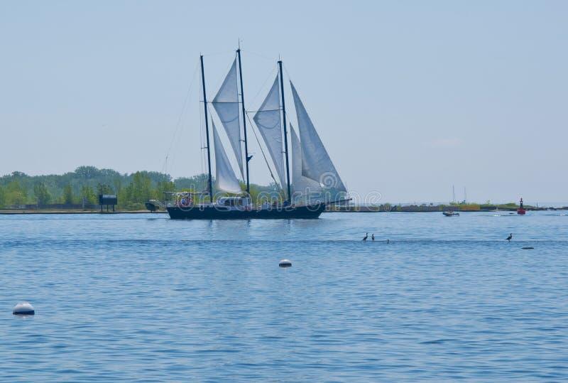 Waterway, Water, Sail, Sailboat royalty free stock image