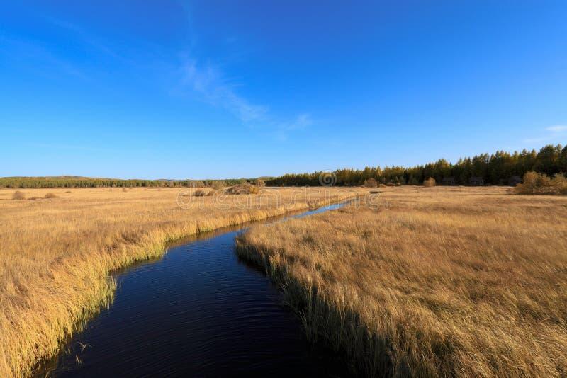 Waterweg over het moerasland royalty-vrije stock fotografie