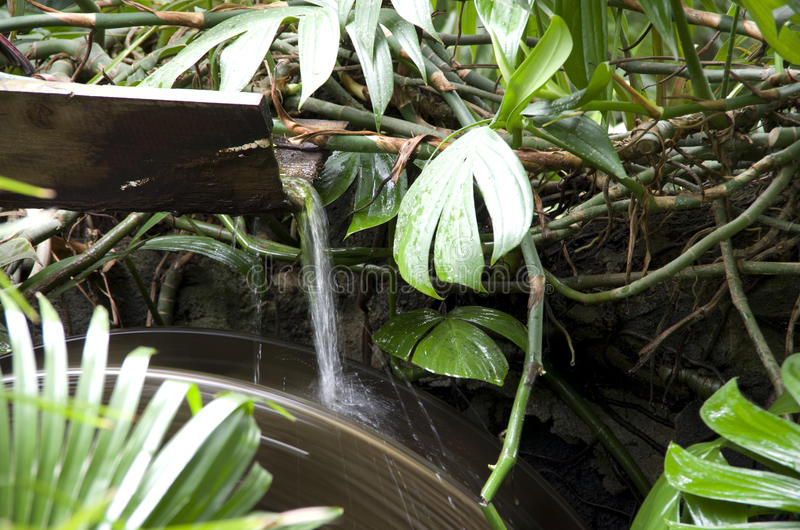 Waterwheel tropical garden royalty free stock images