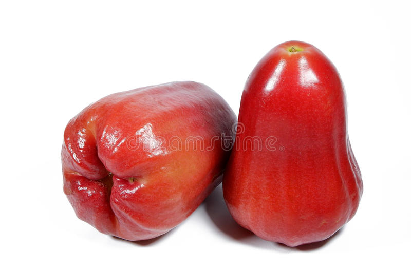 Watery Rose Apple stock photos