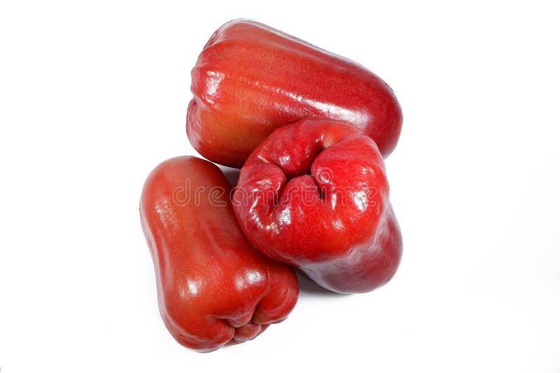 Watery Rose Apple. Or Jambu Air in Indonesian stock photos