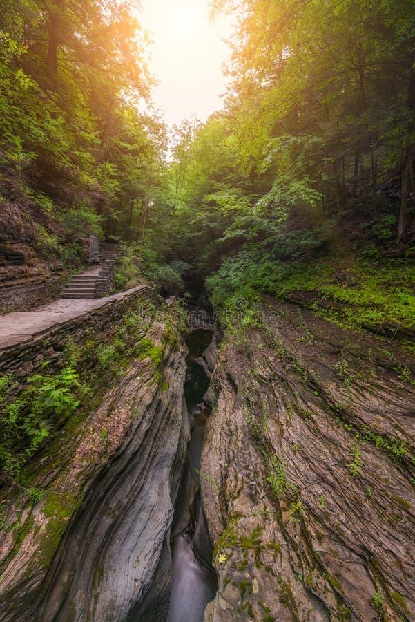 Watkins Glen Gorge do norte do estado em New York foto de stock royalty free