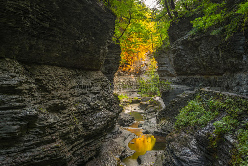 Watkins Glen Gorge Trail imagens de stock royalty free