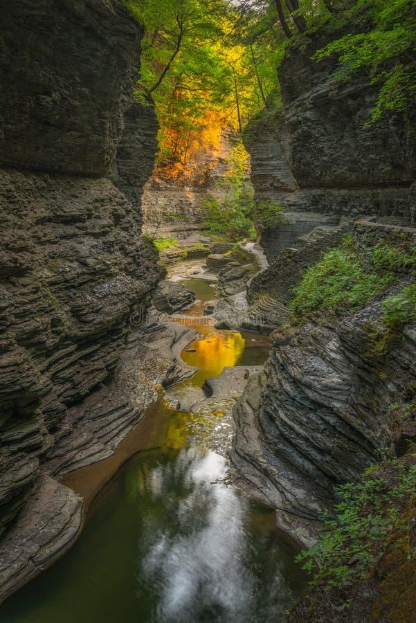 Watkins Glen Gorge Trail fotografia de stock royalty free