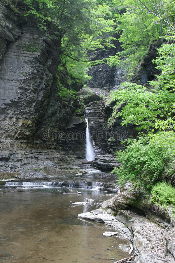 Watkins Glen Gorge And Waterfall Royalty Free Stock Image