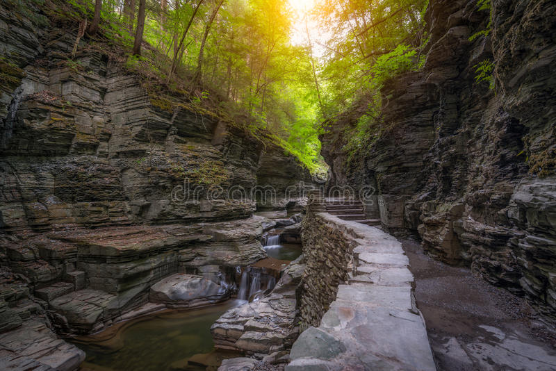 Watkins Glen Hiking Trail no nascer do sol fotos de stock