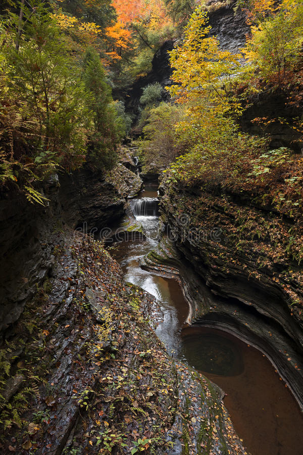 Watkins Glen Waterfalls immagine stock libera da diritti