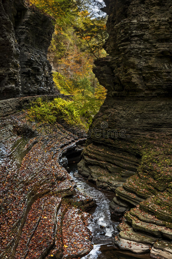 Watkins Glen Waterfalls fotografia de stock royalty free