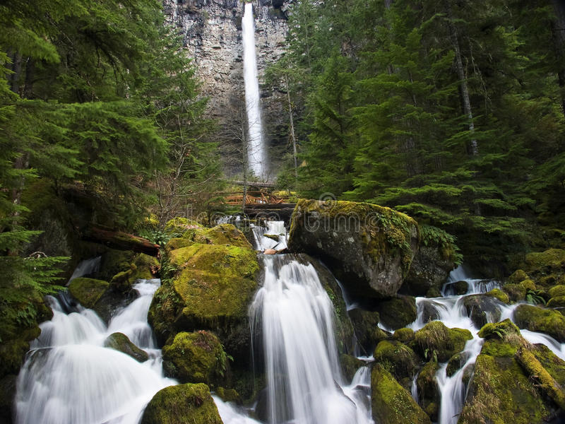 Watson falls. On the Umpqua river stock photos