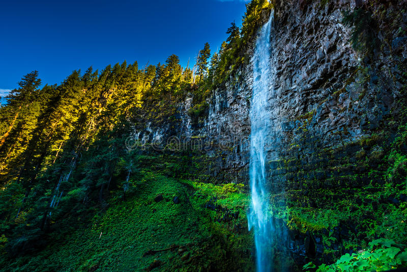 Watson Falls. Clearwater River Douglas County Oregon royalty free stock photo