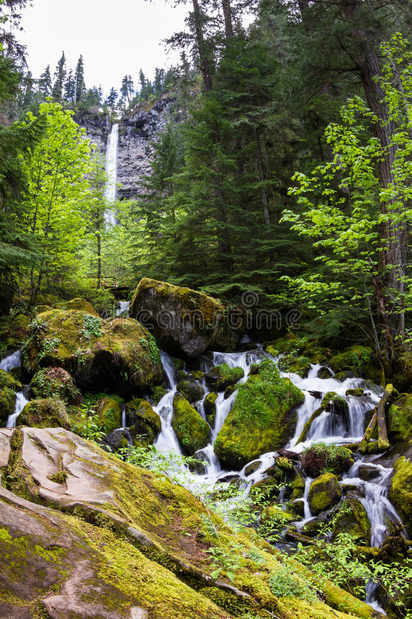 Watson Falls, Oregon. Watson falls is a 272-foot waterfall in Douglas County Oregon, with lush green vegetation in spring royalty free stock images