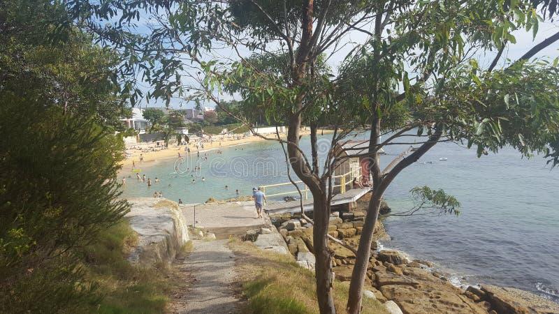 Watsons海湾在悉尼港口,悉尼,NSW,澳大利亚的一个小海滩 免版税库存图片