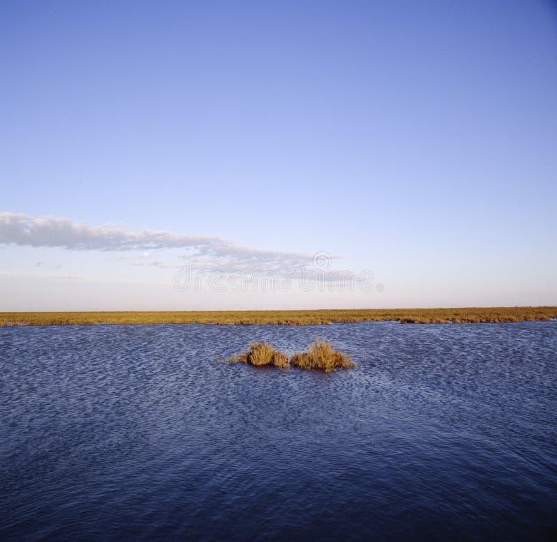 Wattenmeer südlich des breiter Horizont-blauen Graus Frankreichs Camargue stockfotografie