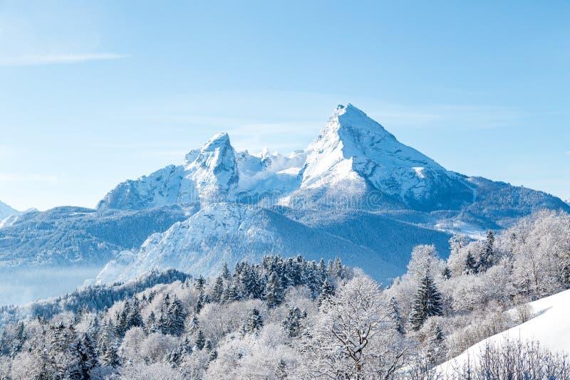Watzmann-Berg im Winter, Bayern, Deutschland lizenzfreie stockbilder
